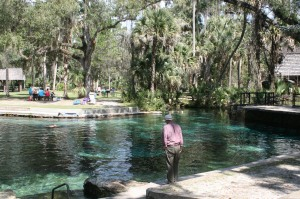 The swimming pool at Juniper Springs