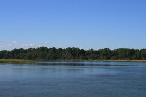 Reflections at Bull Creek