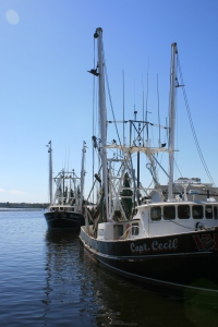 Fishing boats at Oriental Public Dock