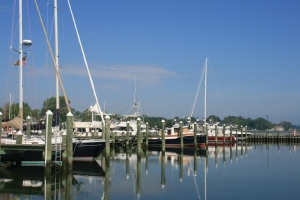 Boats at Cambridge Municipal Marina