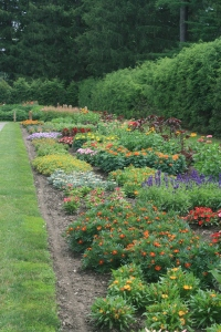 Herbaceous border next to the Rose Garden