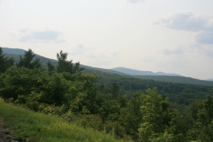 Near Windham