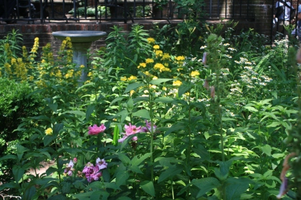 Garden of Old North Church