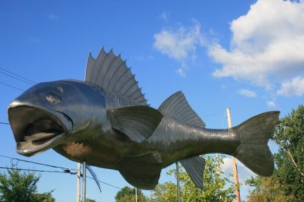 Pisces Pete