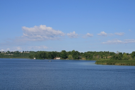 Trent River between Hastings and Rice Lake