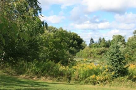 Wetland, Champlain Wendat park