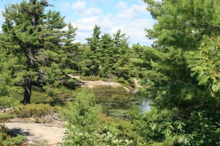 Rockview Trail, Beausoleil Island