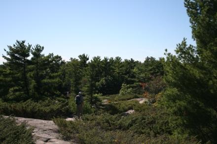 Massasauga Trail, Beausoleil Island