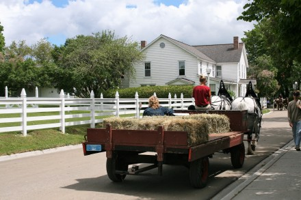 IMG_0318transporting the hay