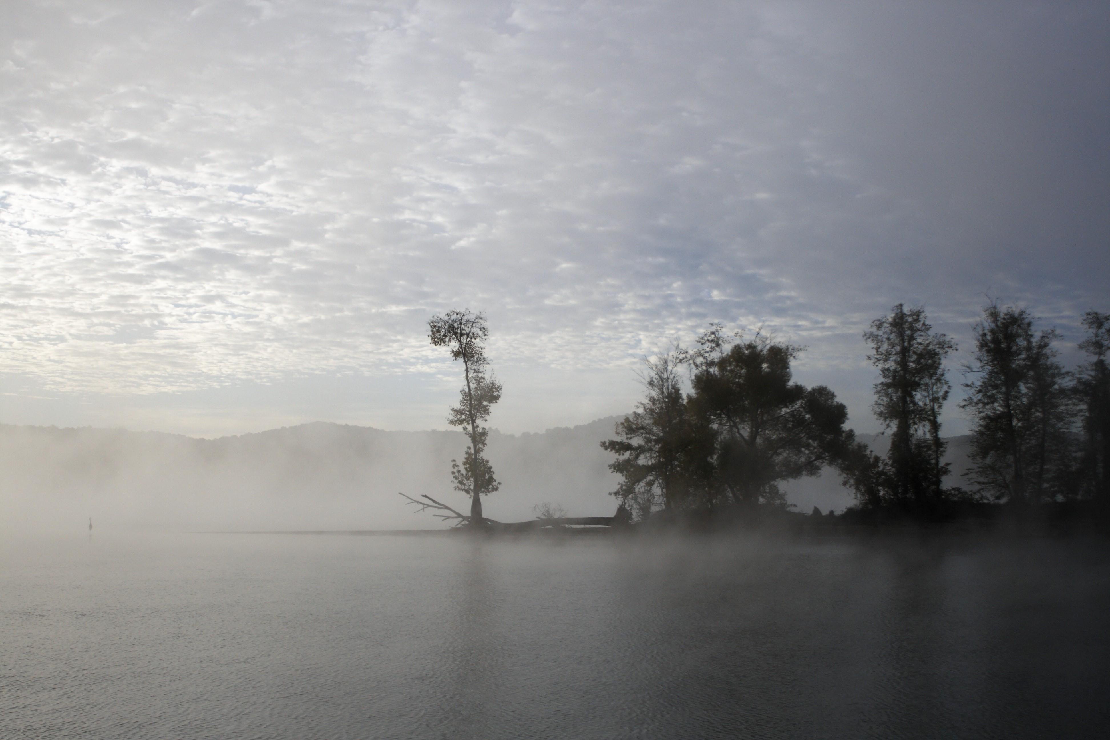 _MG_0008 (2)Morning at Denson's Island